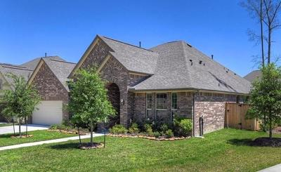 Kingwood Single Family Home For Sale: 6002 Fairway Shores Ln