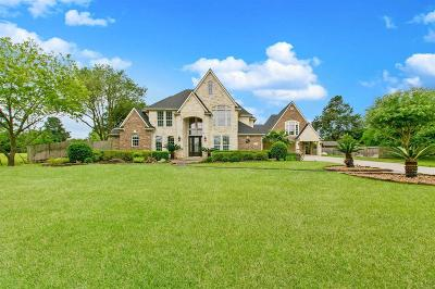 Tomball Single Family Home For Sale: 26407 La Fouche Drive
