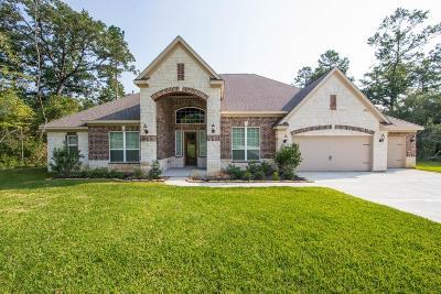 Magnolia Single Family Home For Sale: 21364 Lady Bird Lane