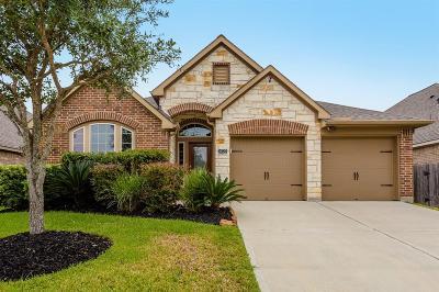 Richmond TX Single Family Home For Sale: $250,000