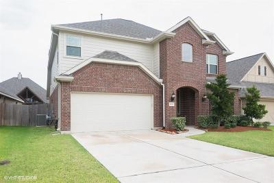 League City Single Family Home For Sale: 1604 Nacogdoches Valley Drive