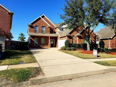 Pearland Single Family Home For Sale: 13103 Shoalwater Lane