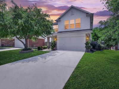 Houston Single Family Home For Sale: 21907 Hemlock Park Drive