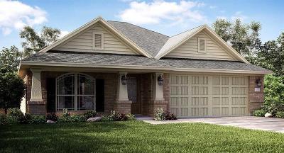 Dickinson Single Family Home For Sale: 2922 Flying Horse Lane
