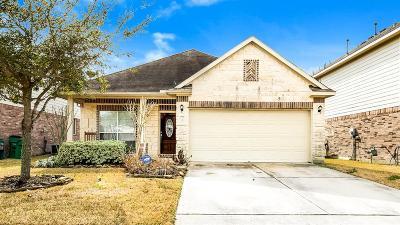 Manvel Single Family Home For Sale: 39 Supiro Drive