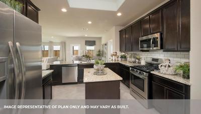 Rosenberg Single Family Home For Sale: 9219 Hemlock Drive