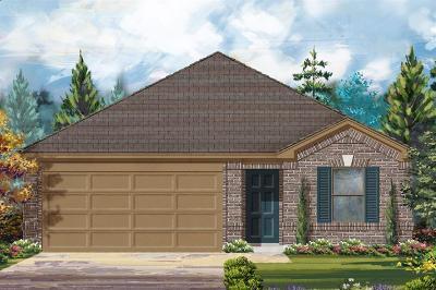 Single Family Home For Sale: 10023 Cimarron Canyon Lane