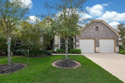Katy Single Family Home For Sale: 27607 Middlesprings Lane