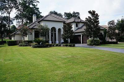Houston Single Family Home For Sale: 2723 Northgate Village Drive