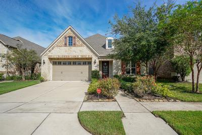 Sugar Land Single Family Home For Sale: 1314 Ralston Branch Way