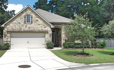 Porter Single Family Home For Sale: 25243 Denton Trace Drive