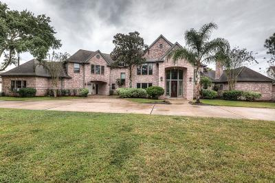 Friendswood Single Family Home For Sale: 1102 West Viejo