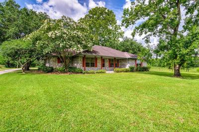 Manvel Single Family Home For Sale: 8902 Crestmont Drive