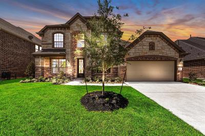 Katy Single Family Home For Sale: 1619 Dove Ridge Drive