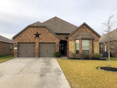 Tomball Single Family Home For Sale: 10210 Bitternut Hickory Lane