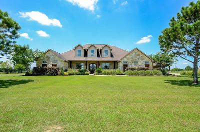 Katy Single Family Home For Sale: 4619 Silhouette Drive
