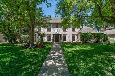 Houston Single Family Home For Sale: 1310 E Vistawood Drive