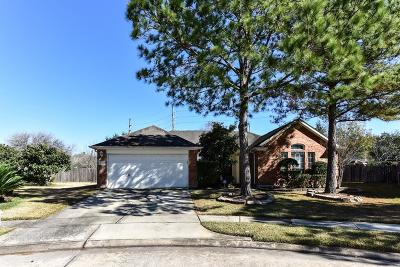 Sugar Land Single Family Home For Sale: 2418 Avery Park Drive