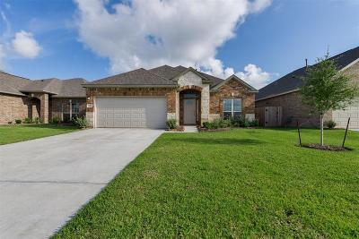 Texas City Single Family Home For Sale: 8817 Explorer Drive