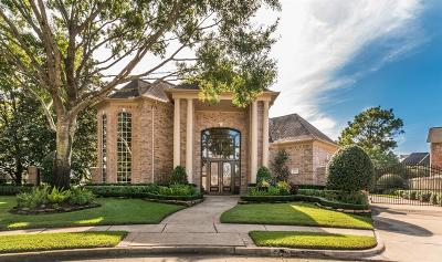 Houston Single Family Home For Sale: 3803 Canyon Bluff Court
