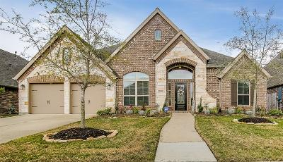 Friendswood Single Family Home For Sale: 1505 Dusty Rose Court