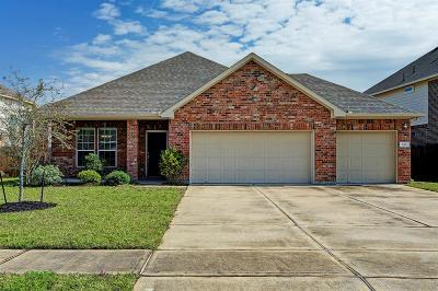 Dickinson Single Family Home For Sale: 249 Harbor Bend Lane