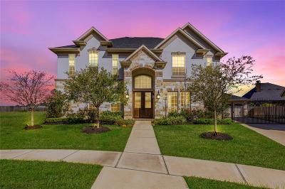 Katy Single Family Home For Sale: 29210 Rock Daisy Court