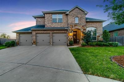 Fort Bend County Single Family Home For Sale: 2842 Walnut Crest Drive