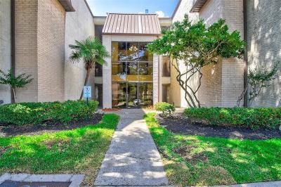 Houston Condo/Townhouse For Sale: 8417 Hearth Drive #6
