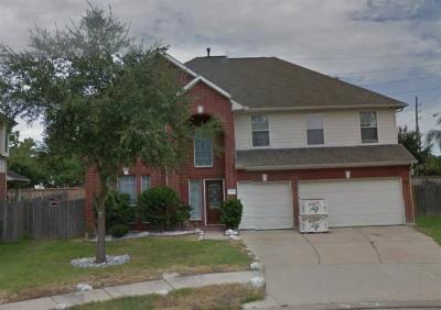 Houston Single Family Home For Sale: 3702 Ashlee Lane