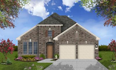 Pearland Single Family Home For Sale: 2015 Granite Pass Drive