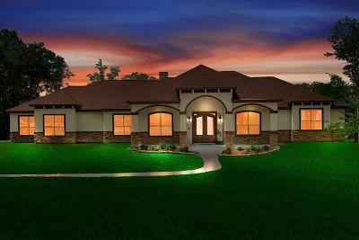 Montgomery Single Family Home For Sale: 24029 Dapplegray Lane W