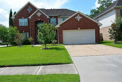 Houston Single Family Home For Sale: 3807 Ashlee Lane