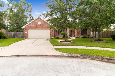 Houston Single Family Home For Sale: 14451 Country Haven