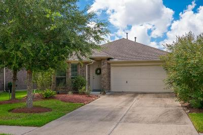 Pearland Single Family Home For Sale: 13104 Trail Manor Drive