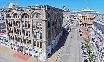 Galveston Mid/High-Rise For Sale: 2402 Mechanic Street #305
