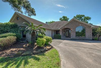 Conroe Single Family Home For Sale: 903 Sandy Beach Drive