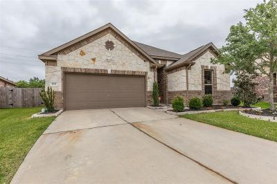 Katy Single Family Home For Sale: 3011 Meadow Prairie Street