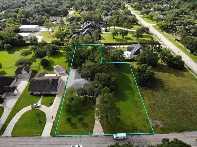 Friendswood Single Family Home For Sale: 607 W Castlewood Avenue
