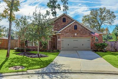 Montgomery Single Family Home For Sale: 247 Soaring Pines Place