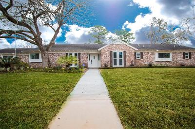 Houston Single Family Home For Sale: 303 Blue Willow Drive