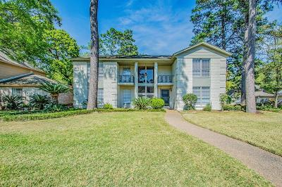 Houston Single Family Home For Sale: 11702 Idlebrook Drive