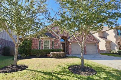 Pearland Single Family Home For Sale: 2918 Village Brook Lane