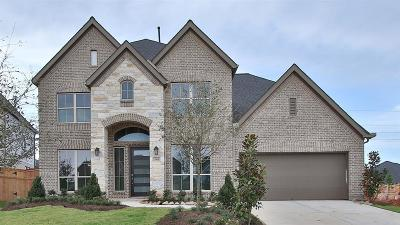 Fulshear Single Family Home For Sale: 3908 Lily Park Lane