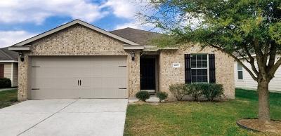 Spring Single Family Home For Sale: 4011 Pedernales River Lane