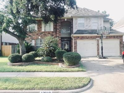 Houston Single Family Home For Sale: 13910 Danton Falls Drive