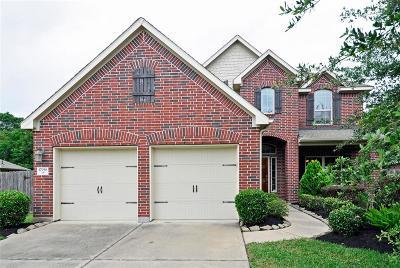 Houston Single Family Home For Sale: 17938 Windy Canyon Lane