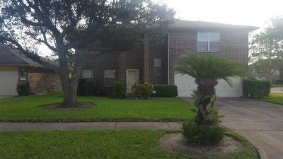 Houston Single Family Home For Sale: 16223 Boot Ridge Road