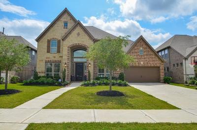 Fort Bend County Single Family Home For Sale: 2819 Juniper Pines Lane