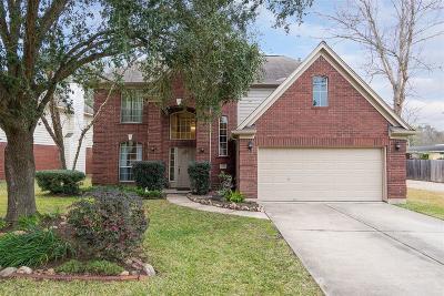 Katy Single Family Home For Sale: 18514 Sandelford Drive